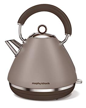 bouilloire morphy richards