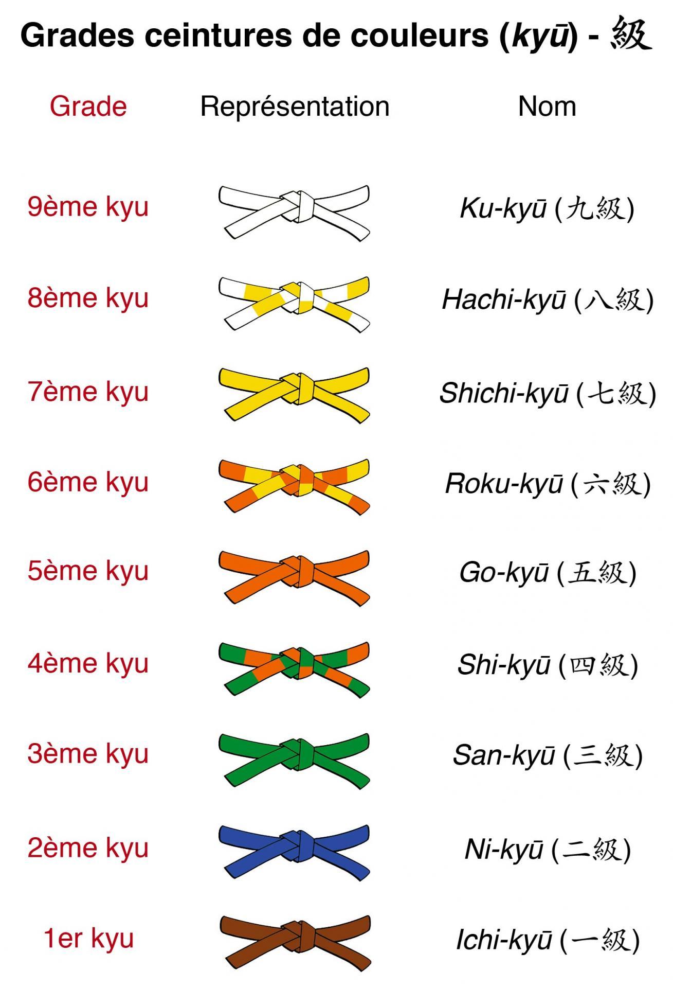 ceinture judo