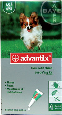advantix chiot