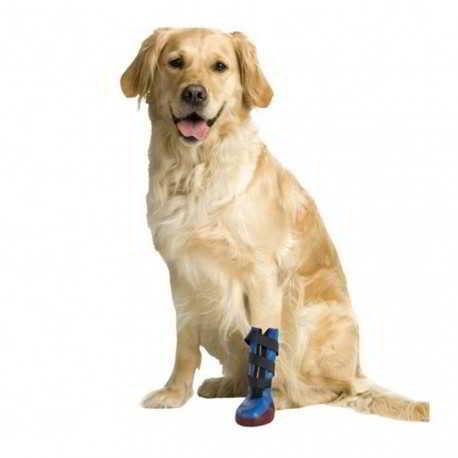 bottes pour chien