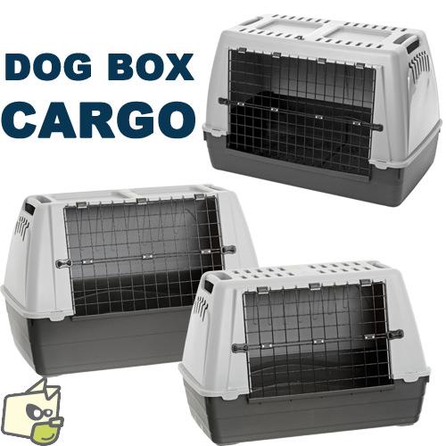 box de transport pour chien