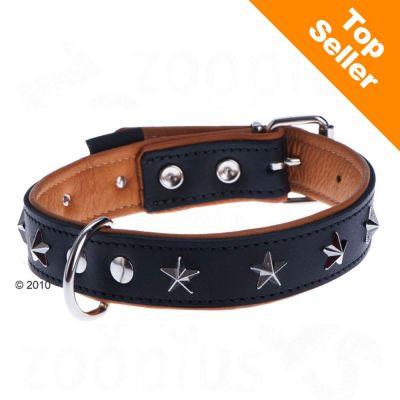 collier en cuir pour chien