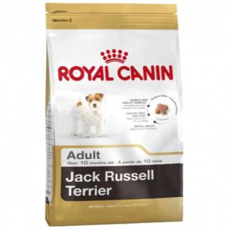 croquette royal canin jack russel