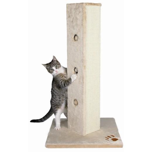 griffoir a chat
