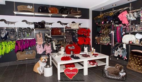 magasin accessoire pour chien