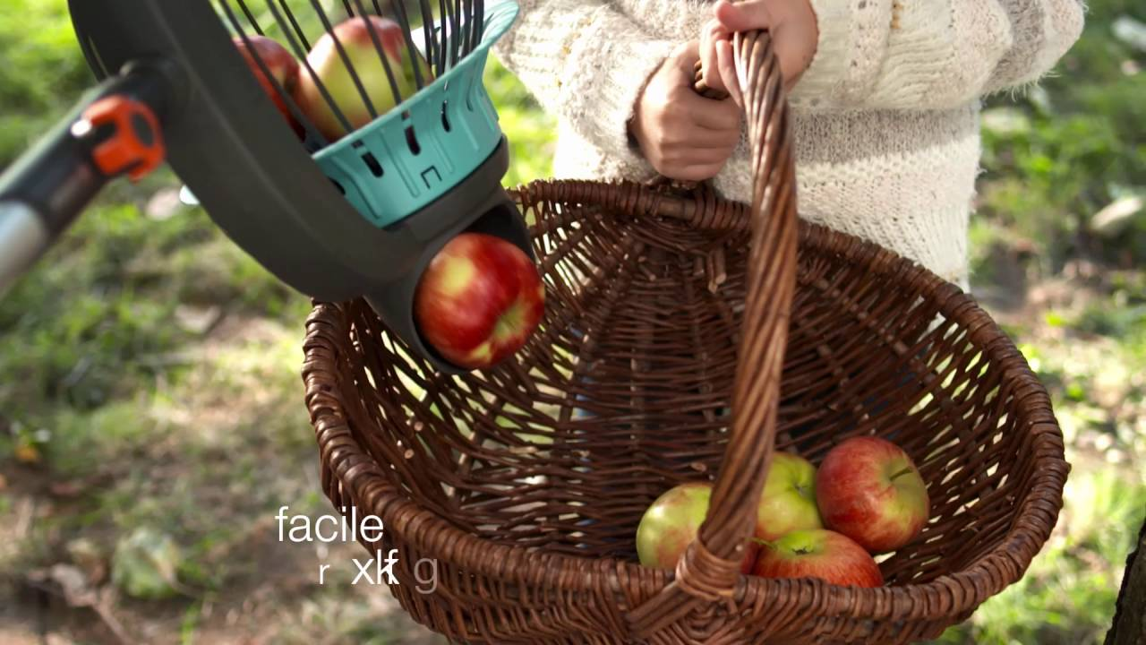ramasse fruit gardena
